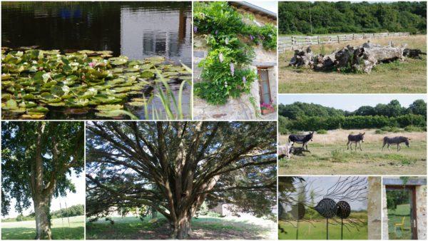 La nature atout principal du Centre Xian